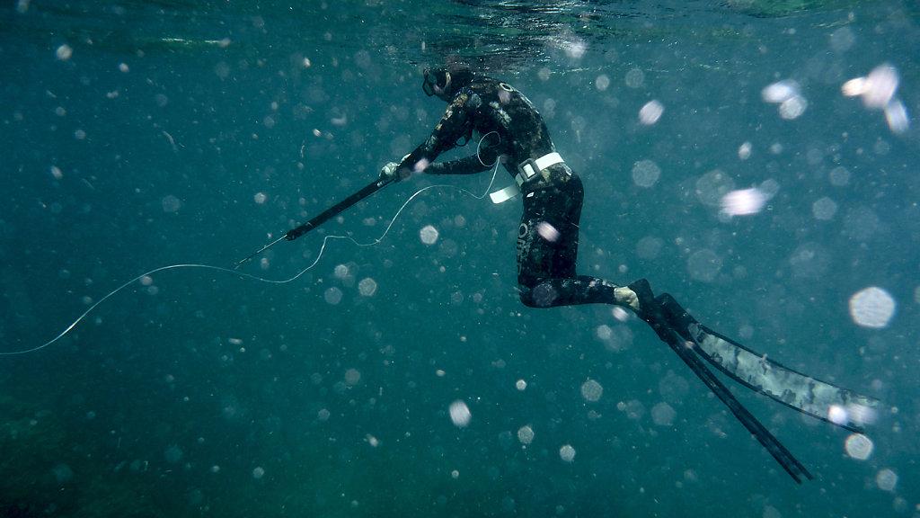 Yoshua speerfishing